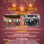 6-11-2016 | Divalifestival 2016