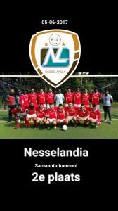 Nesselandia